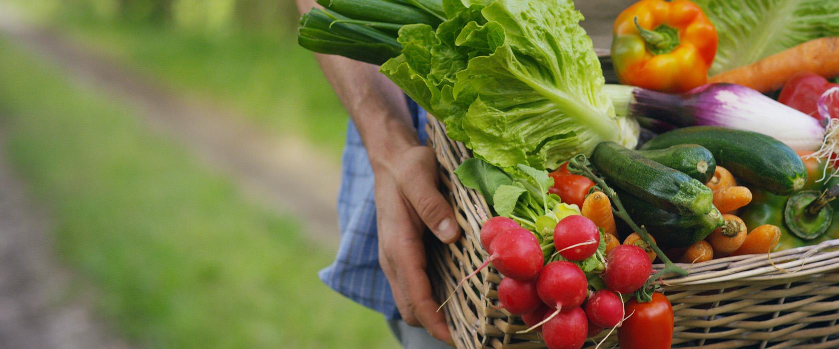 Чем питаются вегетарианцы