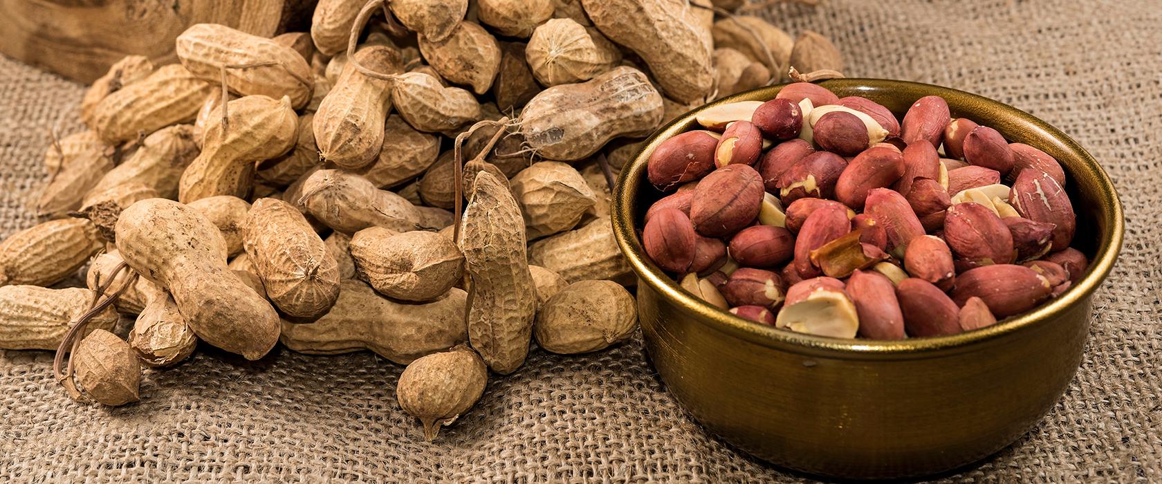 Полезность жареного арахиса
