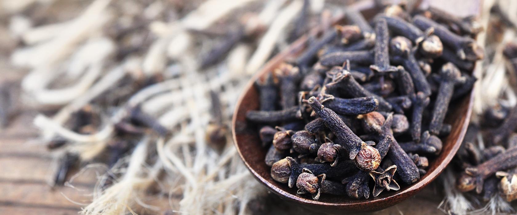 Гвоздика пряность полезные свойства для мужчин