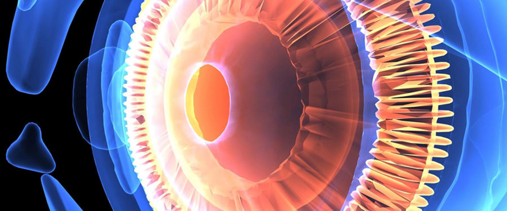 Описание глаз человека красиво
