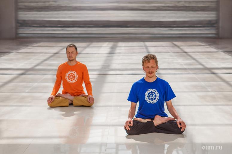 Йога для начинающих дома: упражнения, йога для начинающих дома с нуля