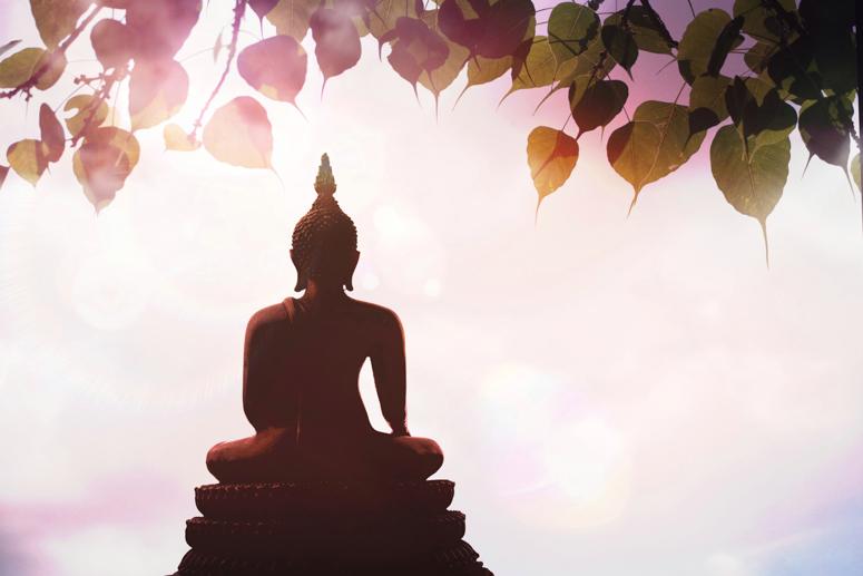медитация, путь к просветлению, буддизм, будда