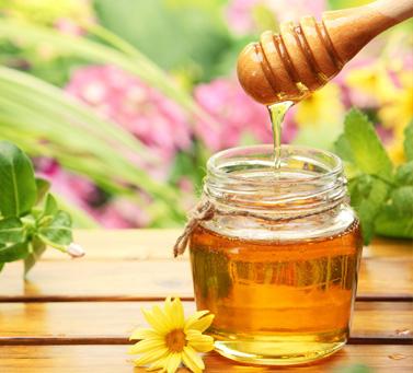 качество мёда, польза мёда