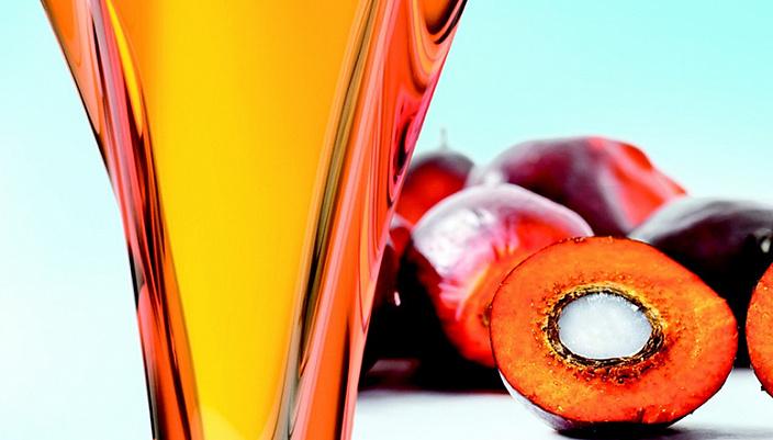 пальмовое масло, вред